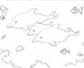 kleurplaat-dolfijnen